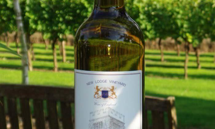 Mystery over as vineyards begin to bear fruit