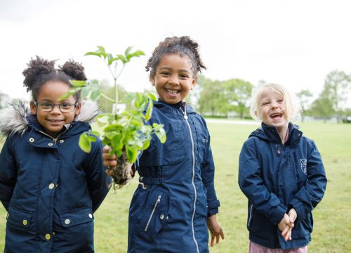 Nursery School Girls with Plant